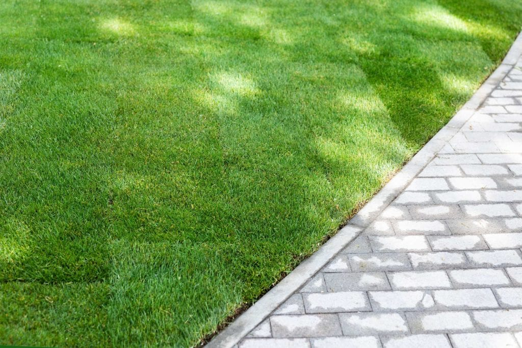 Sod & Turf Replacement