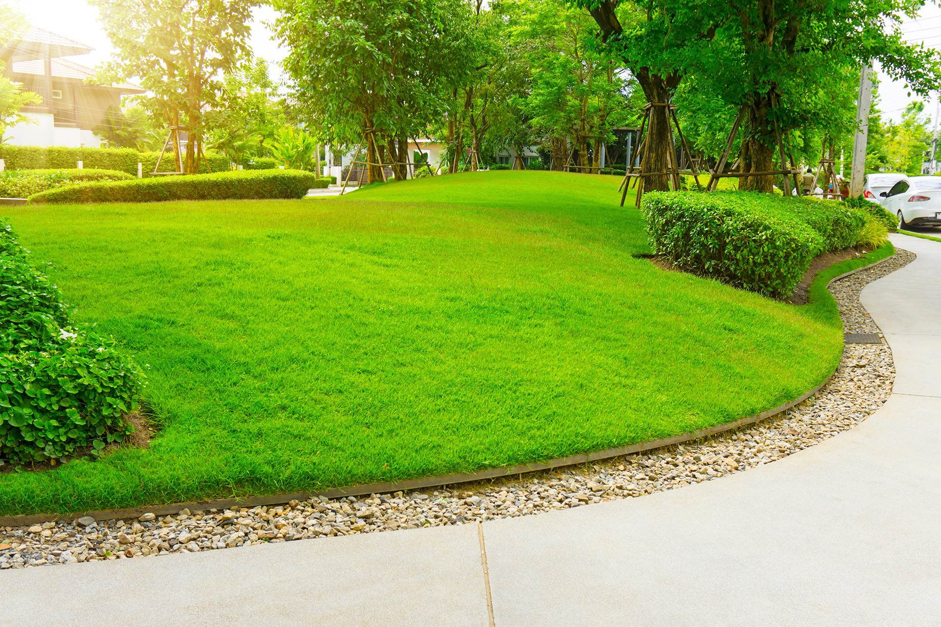 a well maintained lawn