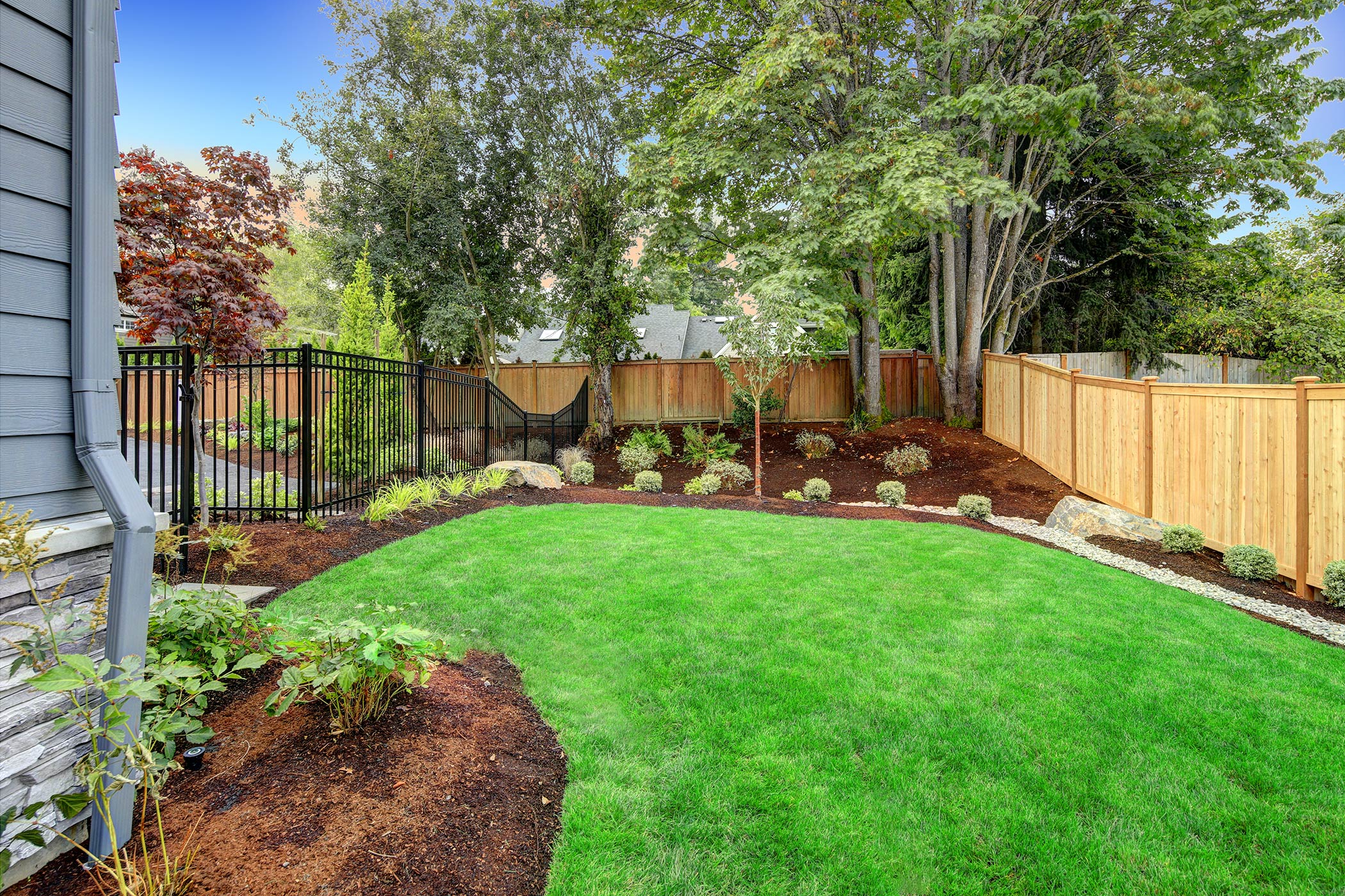 green grass in a yard surrounded by landscaped flower beds